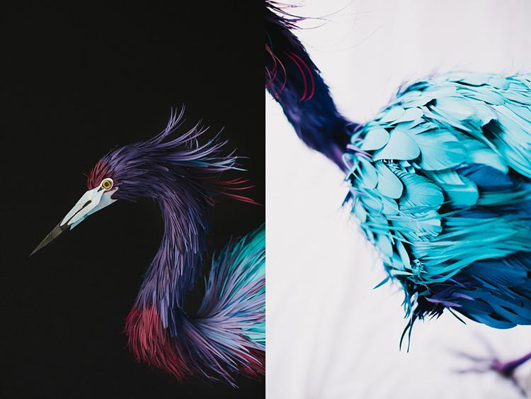 Bird-Paper-Sculptures-by-Diana-Beltran-Herrera-appleman-magazine-agencia-publicidad-sevilla-johnappleman-010