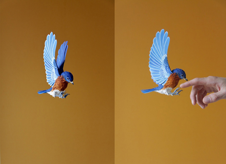 Bird-Paper-Sculptures-by-Diana-Beltran-Herrera-appleman-magazine-agencia-publicidad-sevilla-johnappleman-013