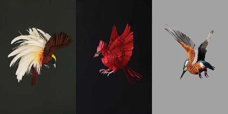 Bird-Paper-Sculptures-by-Diana-Beltran-Herrera-appleman-magazine-agencia-publicidad-sevilla-johnappleman-06