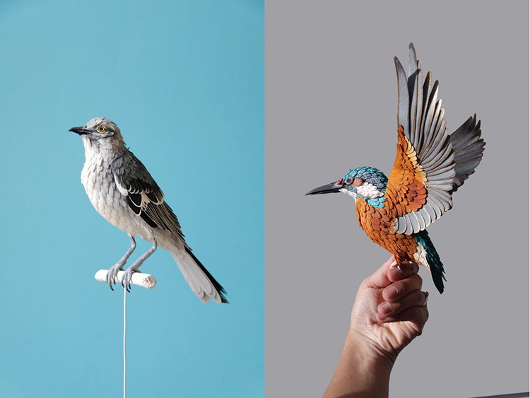 Bird-Paper-Sculptures-by-Diana-Beltran-Herrera-appleman-magazine-agencia-publicidad-sevilla-johnappleman-07