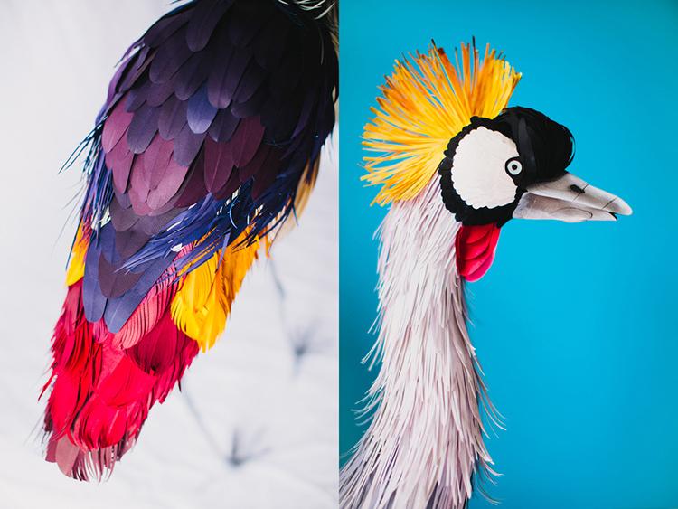 Bird-Paper-Sculptures-by-Diana-Beltran-Herrera-appleman-magazine-agencia-publicidad-sevilla-johnappleman-09